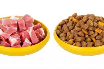 Чем кормить щенка американского стаффордширского терьера?