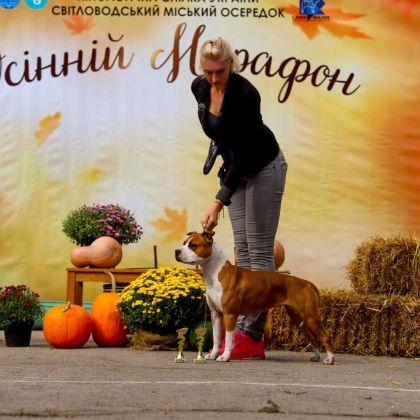 """Выставка """"Осенний марафон-Светловодск 2021"""""""